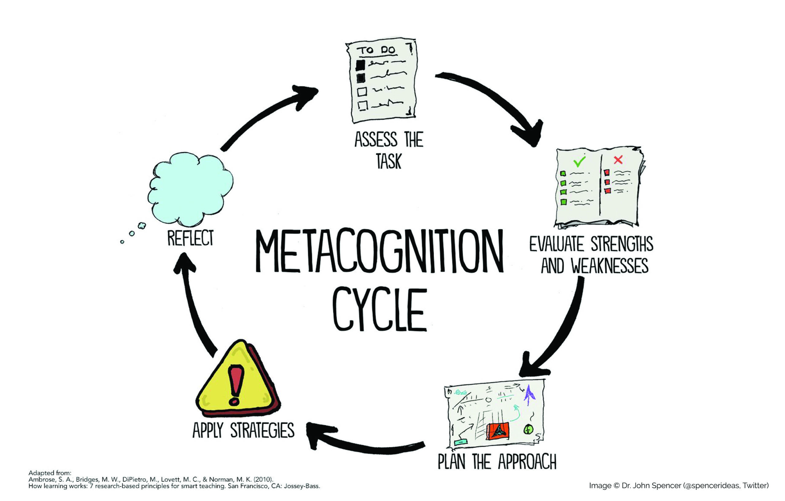 The metacognition cycle