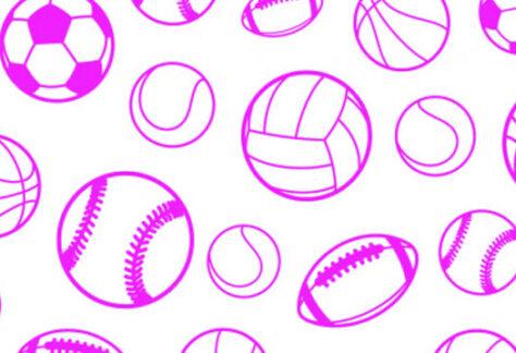 Ball Sports Club